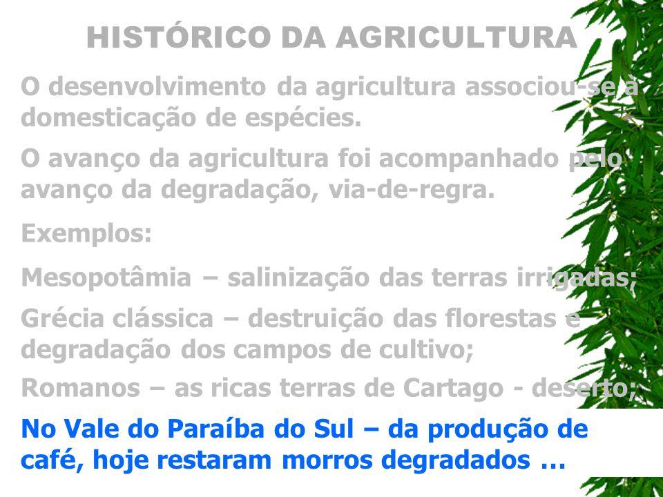 HISTÓRICO DA AGRICULTURA O desenvolvimento da agricultura associou-se à domesticação de espécies. O avan ç o da agricultura foi acompanhado pelo avan