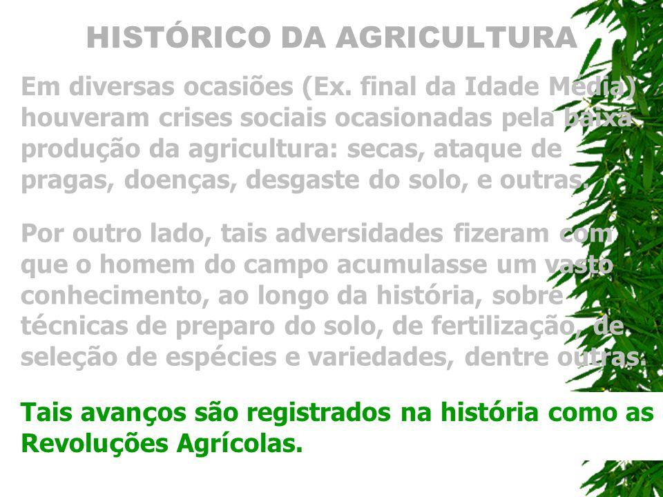 HISTÓRICO DA AGRICULTURA Em diversas ocasiões (Ex. final da Idade Média) houveram crises sociais ocasionadas pela baixa produção da agricultura: secas