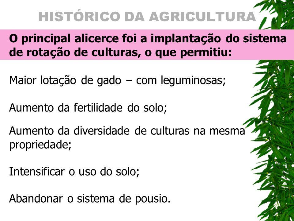 HISTÓRICO DA AGRICULTURA O principal alicerce foi a implanta ç ão do sistema de rota ç ão de culturas, o que permitiu: Maior lota ç ão de gado – com l