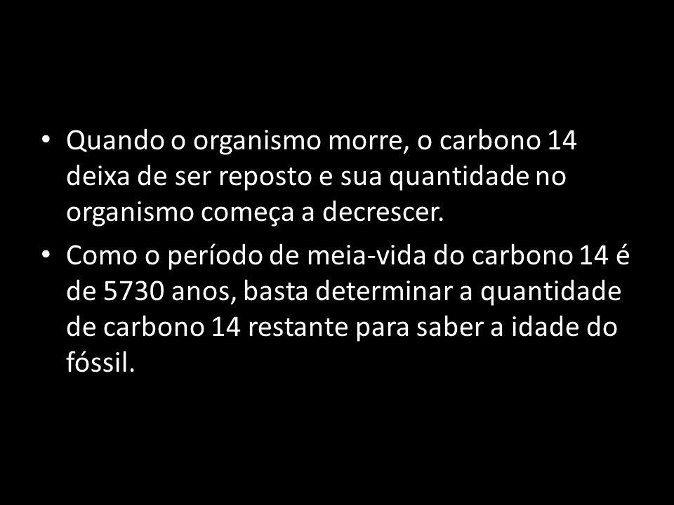 Quando o organismo morre, o carbono 14 deixa de ser reposto e sua quantidade no organismo começa a decrescer. Como o período de meia-vida do carbono 1