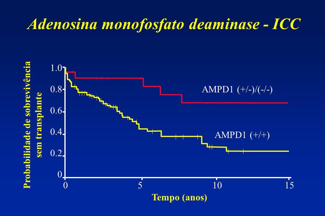 Tempo (anos) 0 5 10 15 1.0 0.8 0.6 0.4 0.2 0 Probabilidade de sobrevivência sem transplante AMPD1 (+/-)/(-/-) AMPD1 (+/+) Adenosina monofosfato deamin