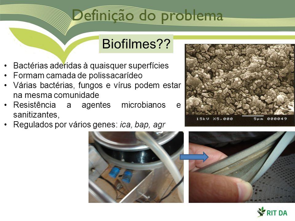 Definição do problema Biofilmes?? Bactérias aderidas à quaisquer superfícies Formam camada de polissacarídeo Várias bactérias, fungos e vírus podem es