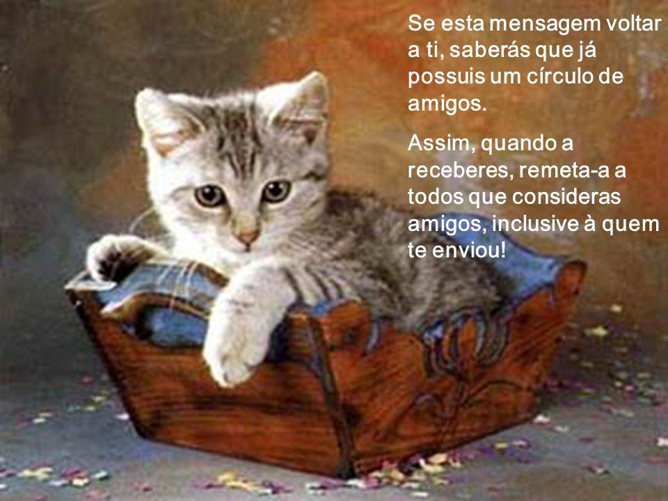Se esta mensagem voltar a ti, saberás que já possuis um círculo de amigos.