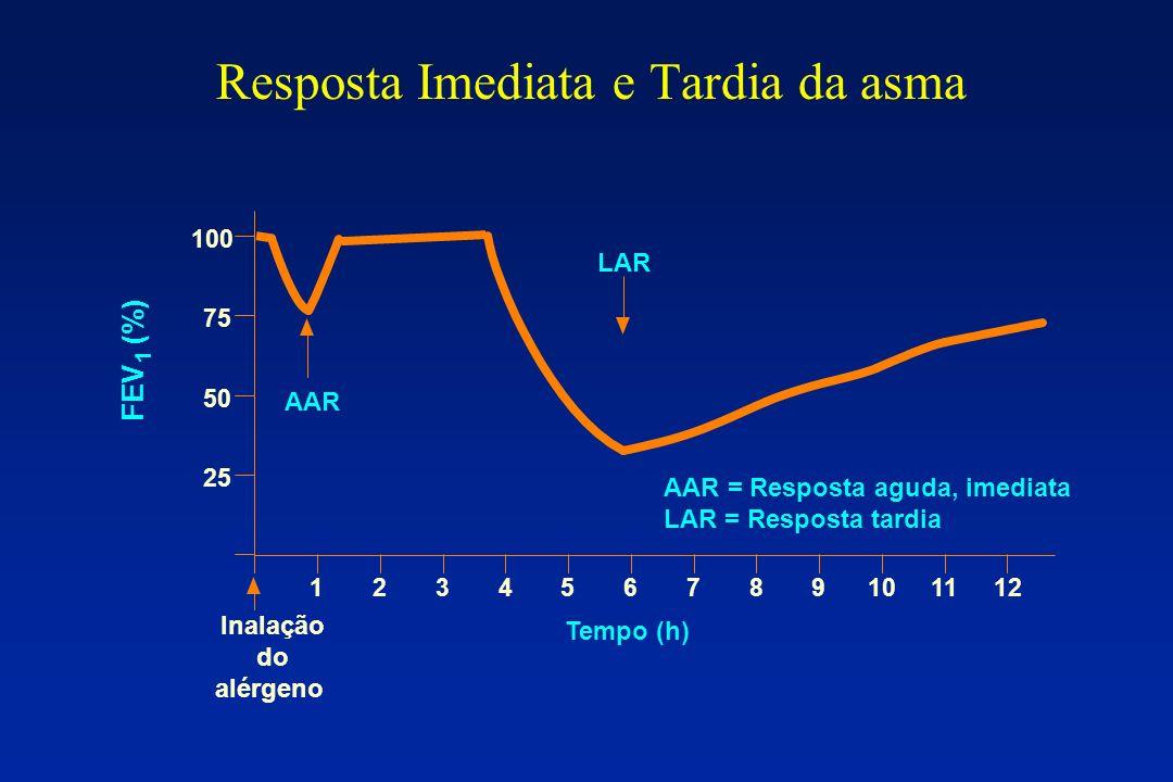 Resposta Imediata e Tardia da asma 50 25 123456789101112 75 100 Tempo (h) Inalação do alérgeno AAR AAR = Resposta aguda, imediata LAR = Resposta tardi