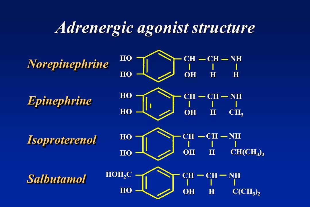 Adrenergic agonist structure NorepinephrineNorepinephrine EpinephrineEpinephrine IsoproterenolIsoproterenol SalbutamolSalbutamol CH CHNH OH H H CH CHN