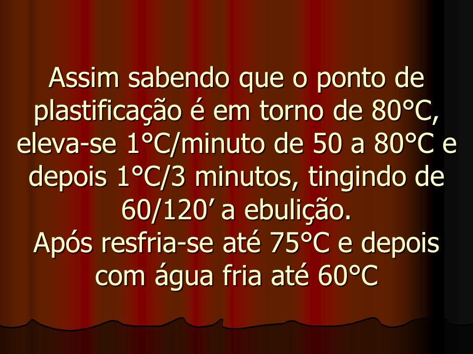 Assim sabendo que o ponto de plastificação é em torno de 80°C, eleva-se 1°C/minuto de 50 a 80°C e depois 1°C/3 minutos, tingindo de 60/120 a ebulição.