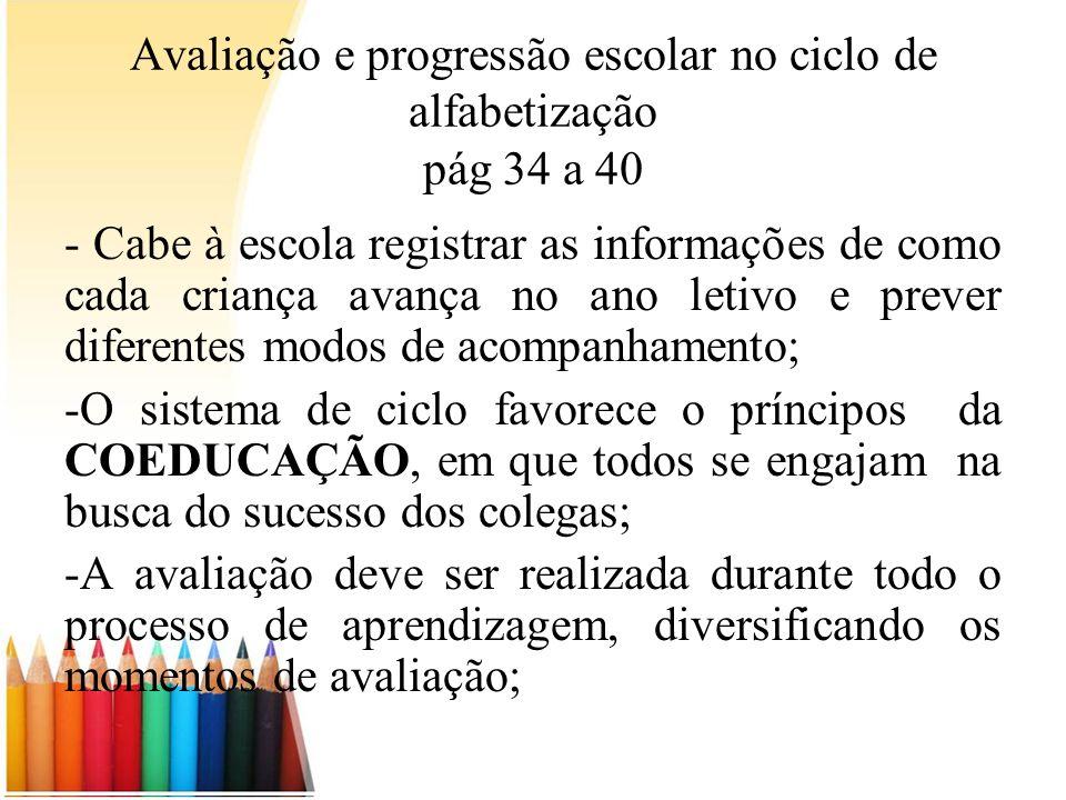 Avaliação e progressão escolar no ciclo de alfabetização pág 34 a 40 - Cabe à escola registrar as informações de como cada criança avança no ano letiv