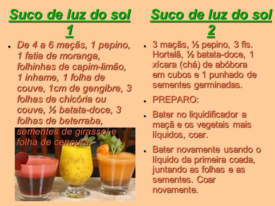 Suco de luz do sol 1 De 4 a 6 maçãs, 1 pepino, 1 fatia de moranga, folhinhas de capim-limão, 1 inhame, 1 folha de couve, 1cm de gengibre, 3 folhas de
