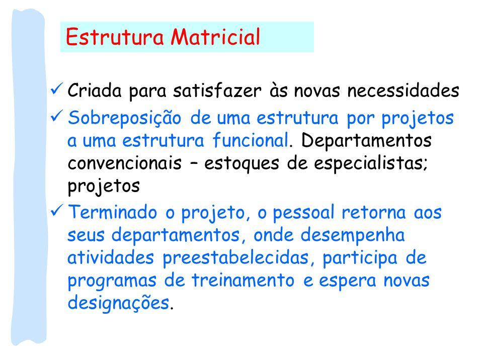 Estrutura Matricial Criada para satisfazer às novas necessidades Sobreposição de uma estrutura por projetos a uma estrutura funcional. Departamentos c