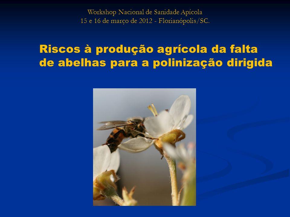 Workshop Nacional de Sanidade Apícola 15 e 16 de março de 2012 - Florianópolis/SC. Riscos à produção agrícola da falta de abelhas para a polinização d