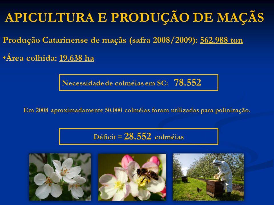 Produção Catarinense de maçãs (safra 2008/2009): 562.988 ton Área colhida: 19.638 ha APICULTURA E PRODUÇÃO DE MAÇÃS Necessidade de colméias em SC: 78.
