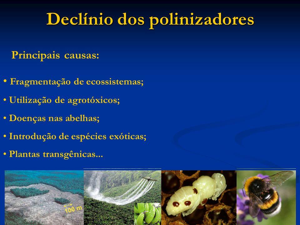 Declínio dos polinizadores Fragmentação de ecossistemas; Utilização de agrotóxicos; Doenças nas abelhas; Introdução de espécies exóticas; Plantas tran