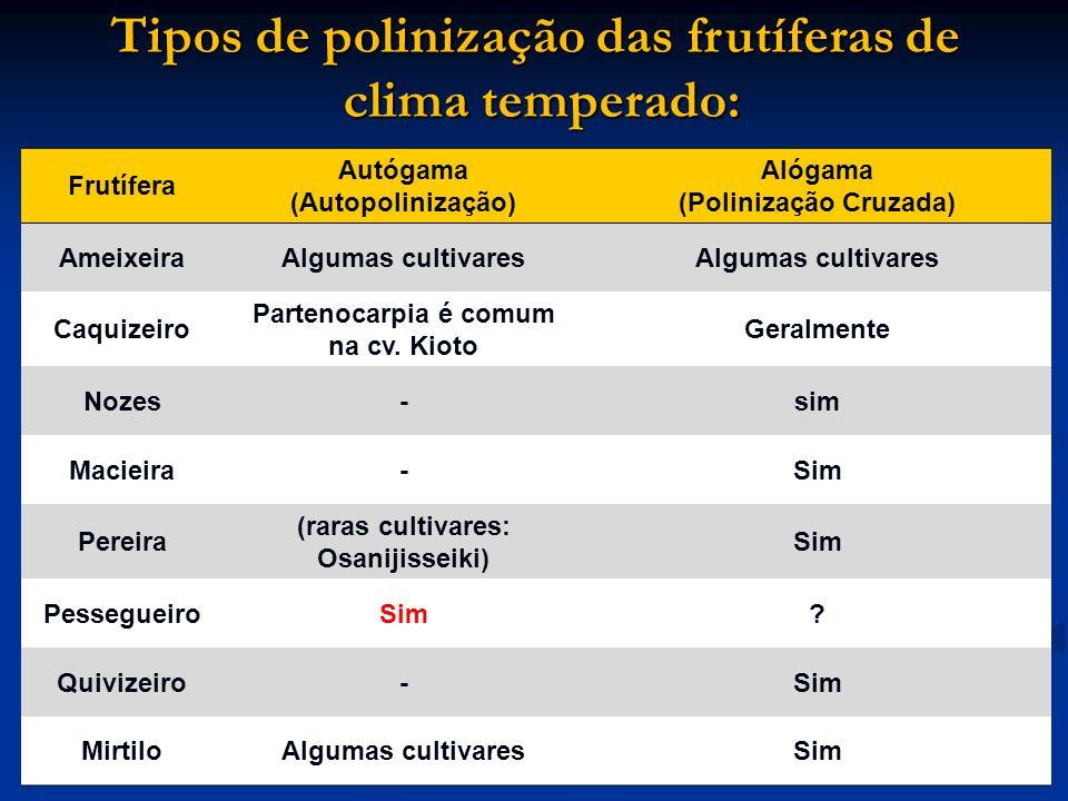 Tipos de polinização das frutíferas de clima temperado: Frutífera Autógama (Autopolinização) Alógama (Polinização Cruzada) AmeixeiraAlgumas cultivares