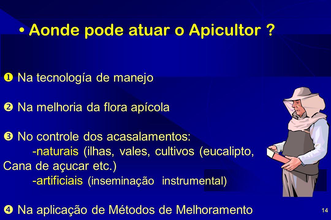 14 Aonde pode atuar o Apicultor .