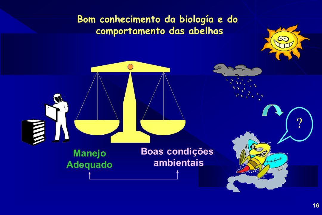 16 Bom conhecimento da biología e do comportamento das abelhas Manejo Adequado Boas condições ambientais ?