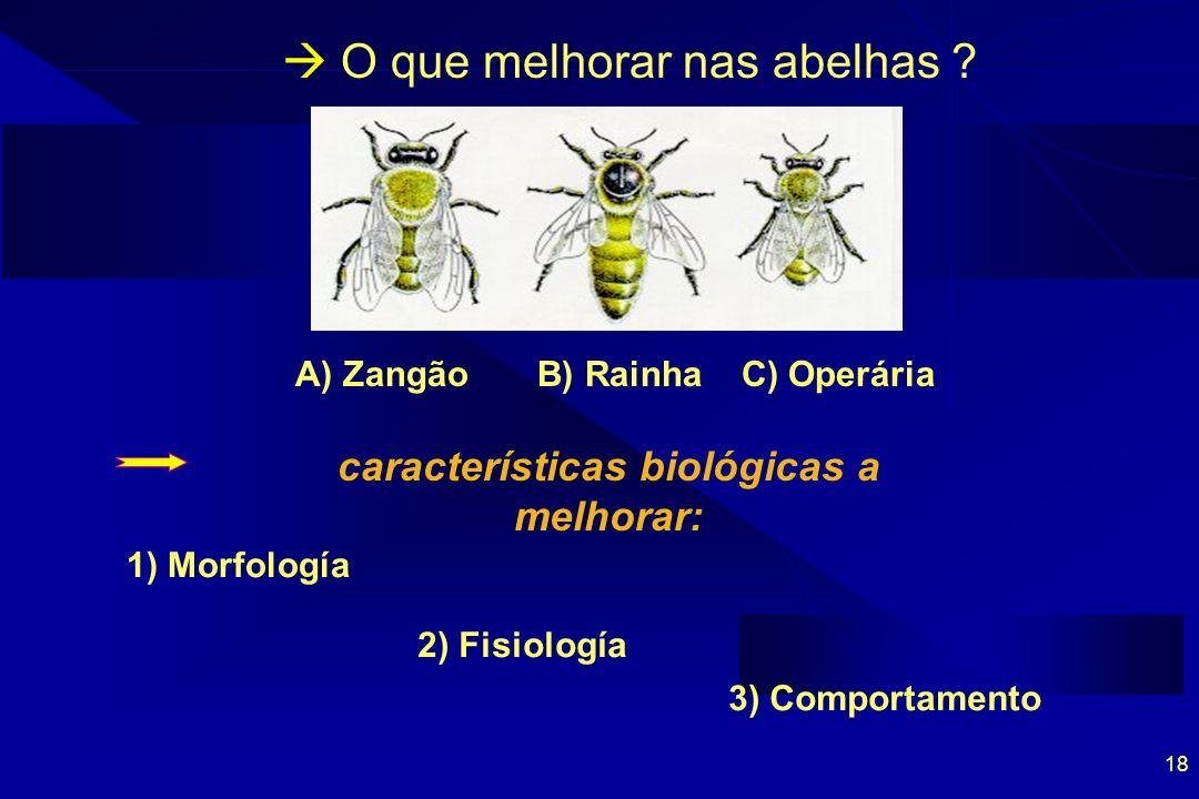 18 O que melhorar nas abelhas .