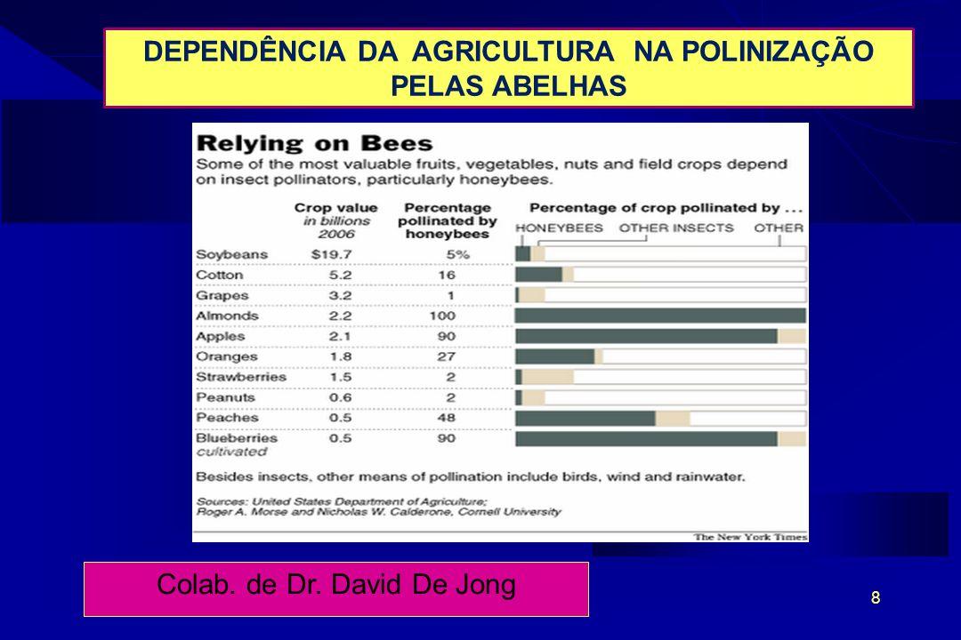 8 DEPENDÊNCIA DA AGRICULTURA NA POLINIZAÇÃO PELAS ABELHAS Colab. de Dr. David De Jong