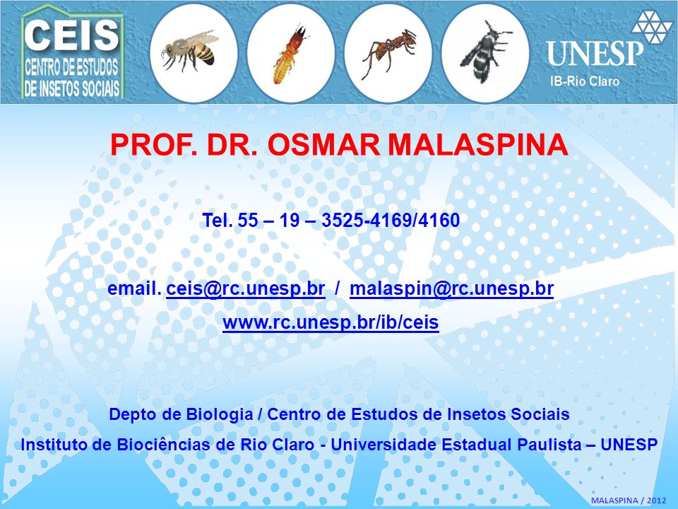 MALASPINA / 2012 PROF. DR. OSMAR MALASPINA Tel. 55 – 19 – 3525-4169/4160 email. ceis@rc.unesp.br / malaspin@rc.unesp.brceis@rc.unesp.brmalaspin@rc.une