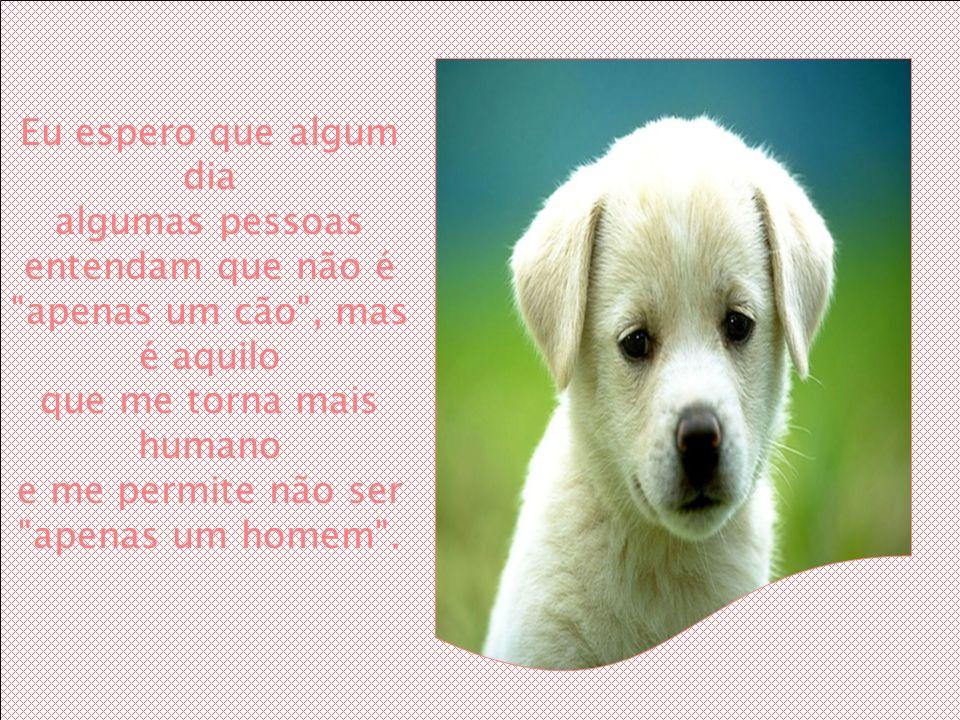 Eu espero que algum dia algumas pessoas entendam que não é apenas um cão , mas é aquilo que me torna mais humano e me permite não ser apenas um homem .