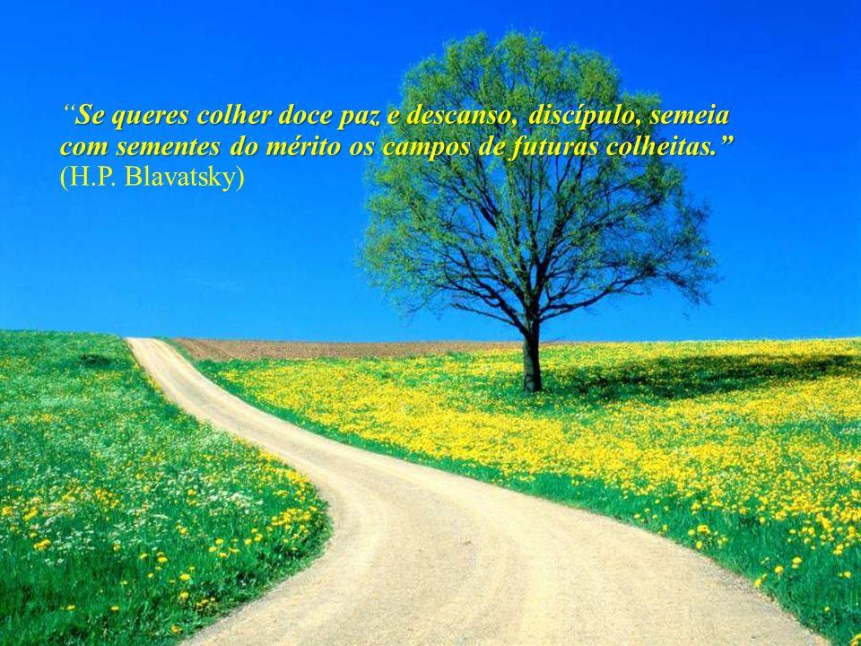 Não existe um caminho para a felicidade. A felicidade é o caminho.Não existe um caminho para a felicidade. A felicidade é o caminho. (Mahatma Gandhi)