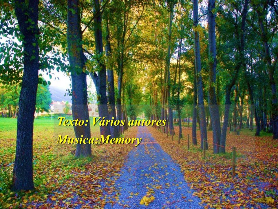 Se queres colher doce paz e descanso, discípulo, semeia com sementes do mérito os campos de futuras colheitas.Se queres colher doce paz e descanso, di