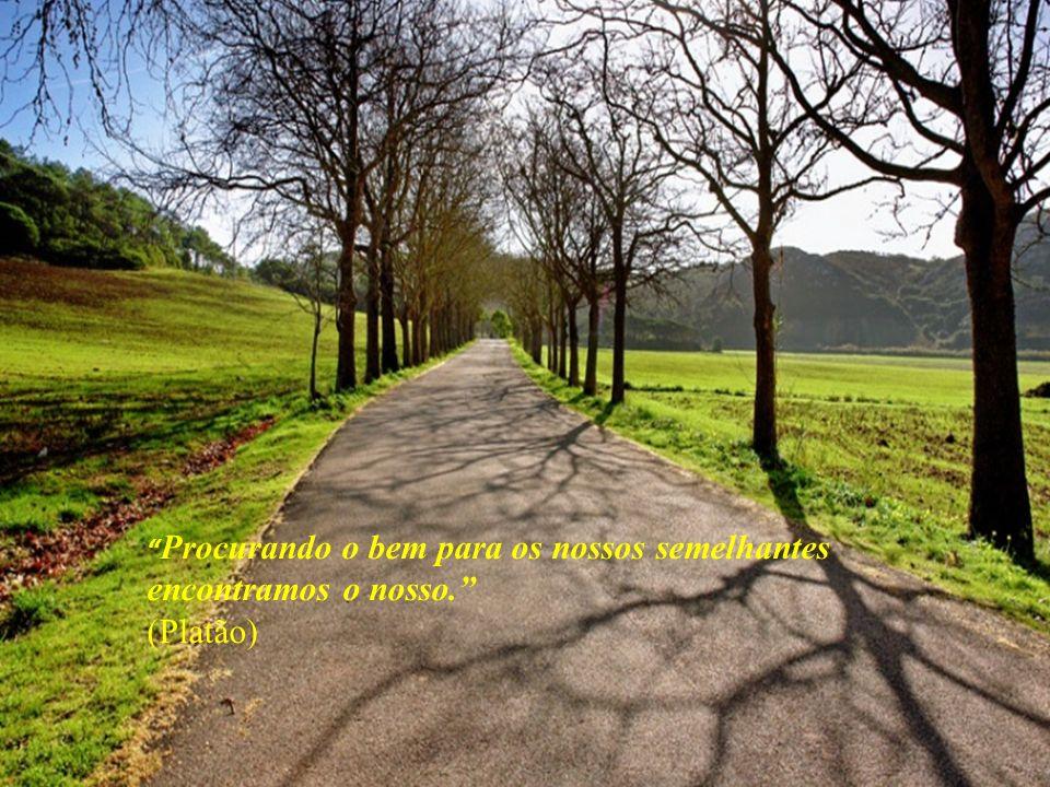 Procurando o bem para os nossos semelhantes encontramos o nosso. (Platão)