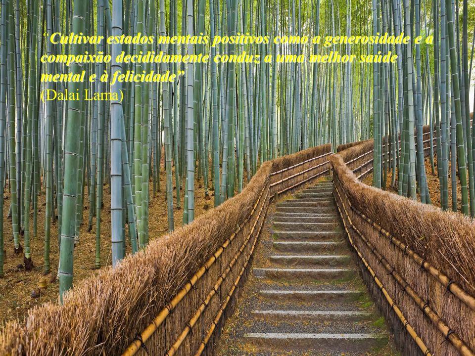 Cultivar estados mentais positivos como a generosidade e a compaixão decididamente conduz a uma melhor saúde mental e à felicidadeCultivar estados mentais positivos como a generosidade e a compaixão decididamente conduz a uma melhor saúde mental e à felicidade (Dalai Lama)