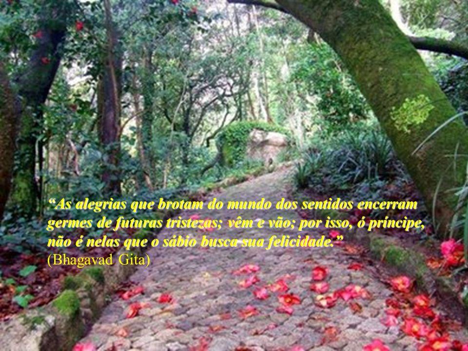 As alegrias que brotam do mundo dos sentidos encerram germes de futuras tristezas; vêm e vão; por isso, ó príncipe, não é nelas que o sábio busca sua felicidade.As alegrias que brotam do mundo dos sentidos encerram germes de futuras tristezas; vêm e vão; por isso, ó príncipe, não é nelas que o sábio busca sua felicidade.