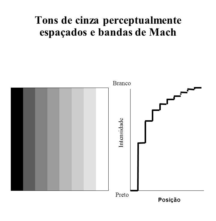 Tons de cinza perceptualmente espaçados e bandas de Mach Branco Preto Intensidade Posição