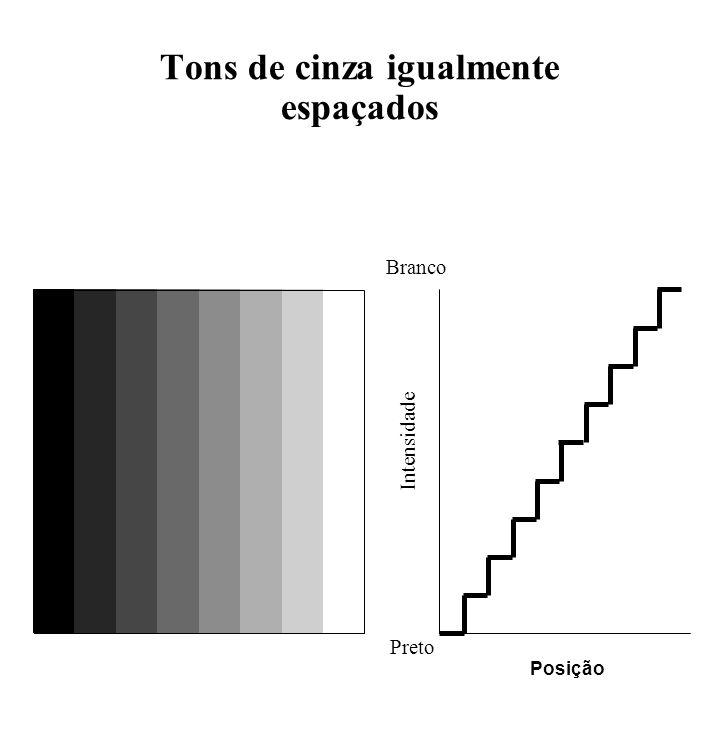 Tons de cinza igualmente espaçados Branco Intensidade Posição Preto