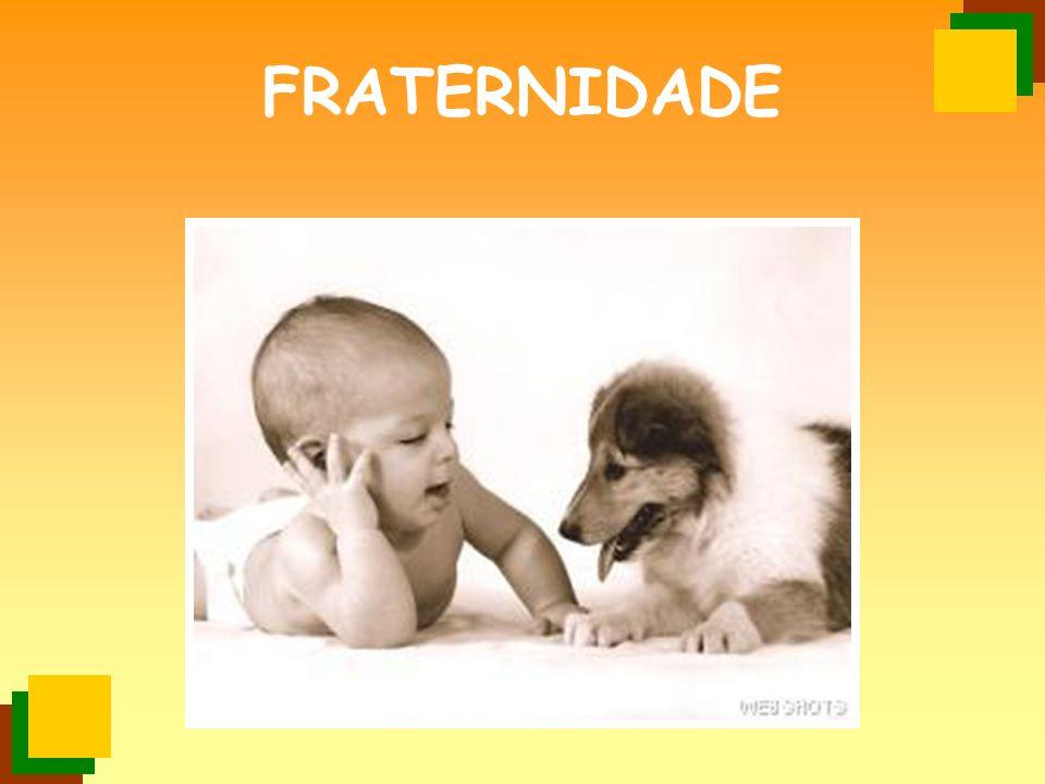 FRATERNIDADE