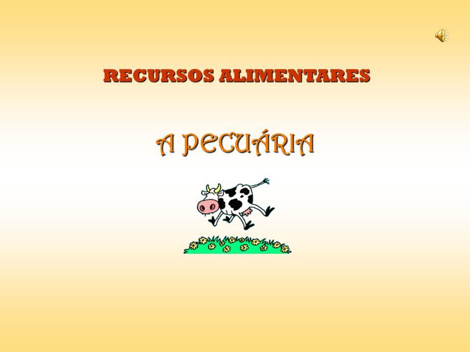 A PECUÁRIA RECURSOS ALIMENTARES