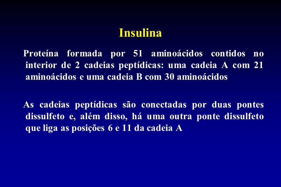 Insulina Proteína formada por 51 aminoácidos contidos no interior de 2 cadeias peptídicas: uma cadeia A com 21 aminoácidos e uma cadeia B com 30 amino