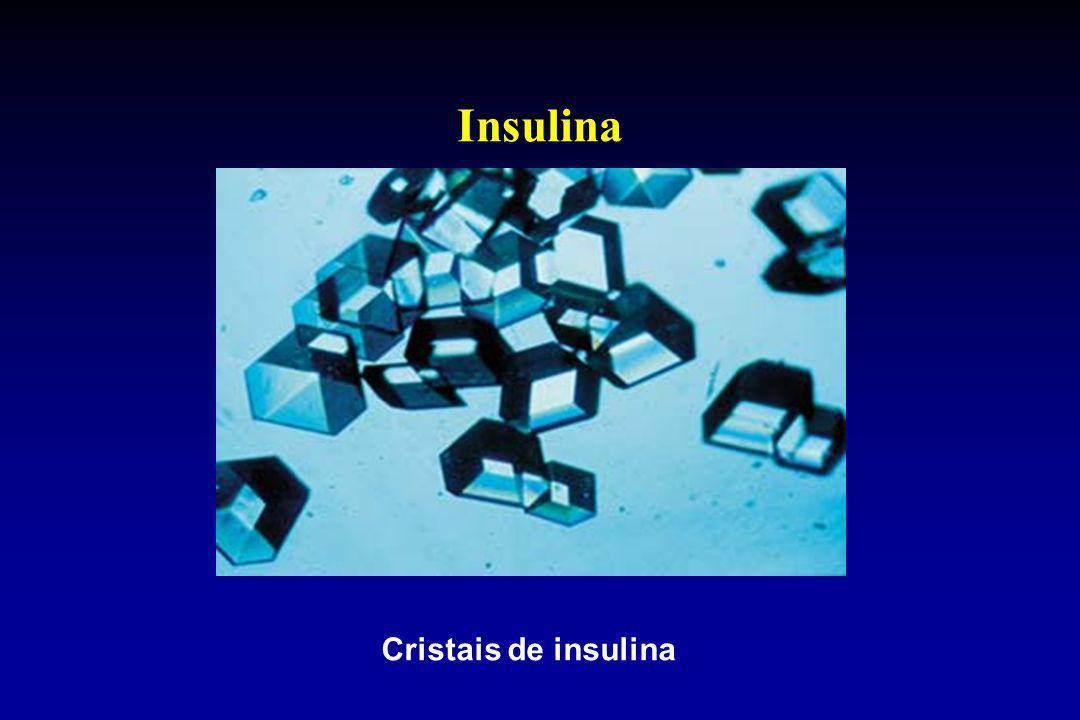Cristais de insulina