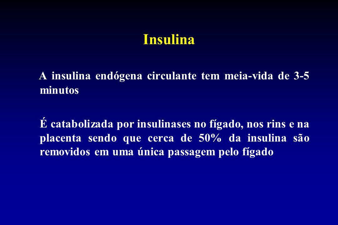 Insulina A insulina endógena circulante tem meia-vida de 3-5 minutos É catabolizada por insulinases no fígado, nos rins e na placenta sendo que cerca