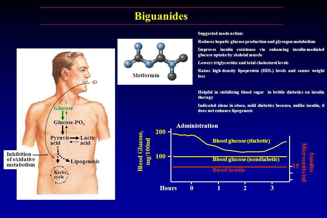 Glucose Glucose-PO 4 Pyruvic acid Lactic acid Lipogenesis Krebs cycle Inhibition of oxidative metabolism Blood insulin Blood glucose (nondiabetic) Blo