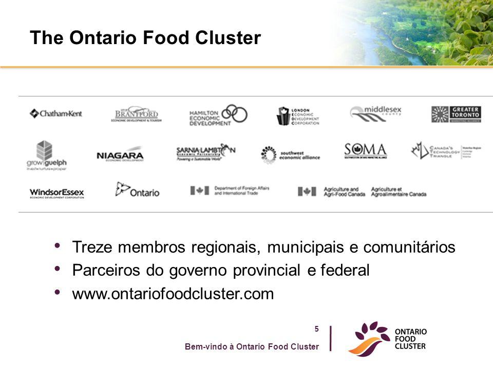 The Ontario Food Cluster 5 Bem-vindo à Ontario Food Cluster Treze membros regionais, municipais e comunitários Parceiros do governo provincial e feder