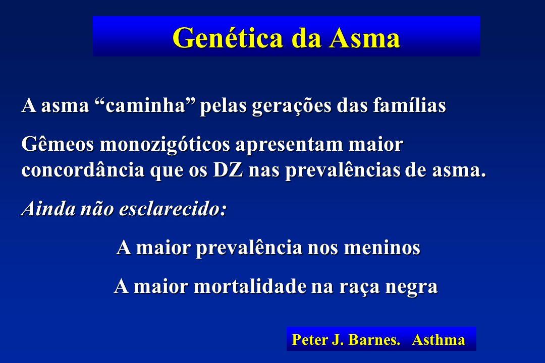 Genética da Asma A asma caminha pelas gerações das famílias Gêmeos monozigóticos apresentam maior concordância que os DZ nas prevalências de asma. Ain