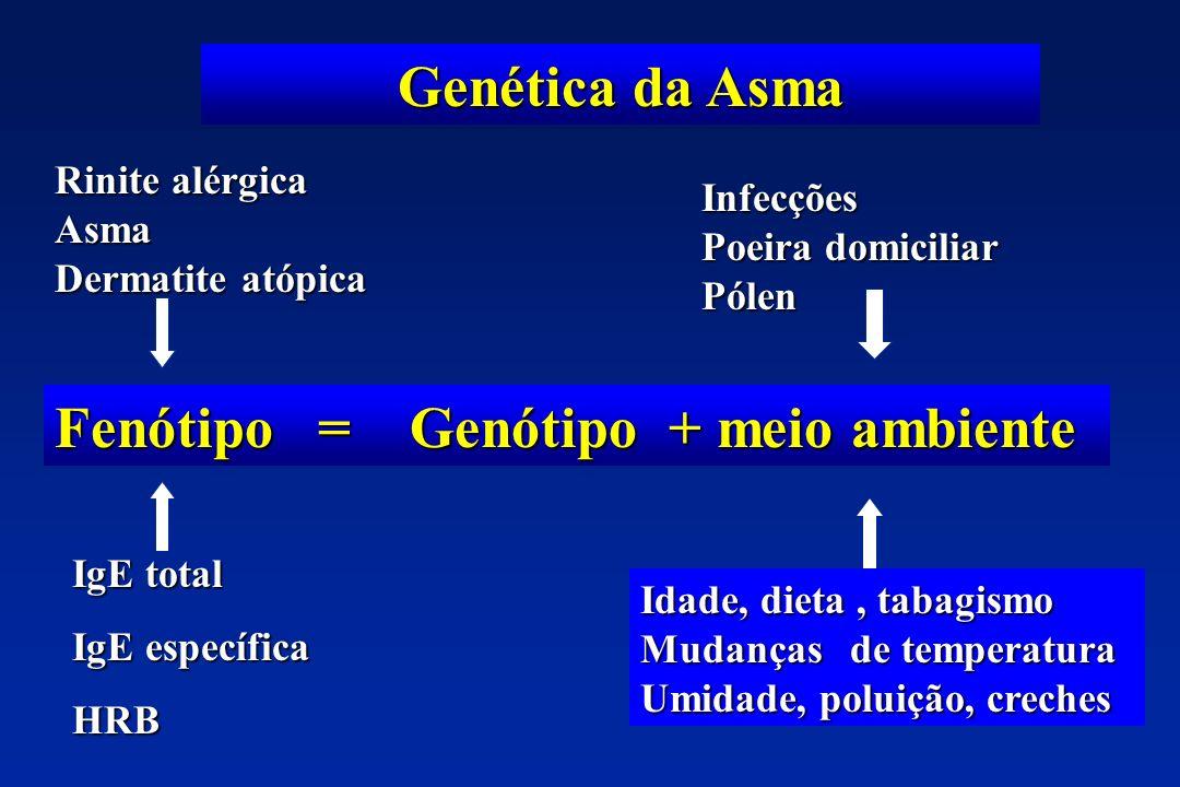 Genética da Asma Fenótipo = Genótipo + meio ambiente Rinite alérgica Asma Dermatite atópica IgE total IgE específica HRB Infecções Poeira domiciliar P