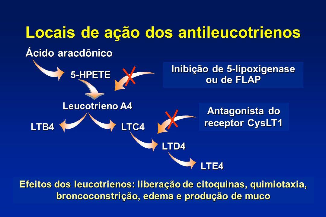 Locais de ação dos antileucotrienos Ácido aracdônico 5-HPETE Leucotrieno A4 LTC4 LTD4 LTE4 LTB4 Inibição de 5-lipoxigenase ou de FLAP Antagonista do r