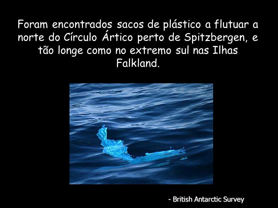Foram encontrados sacos de plástico a flutuar a norte do Círculo Ártico perto de Spitzbergen, e tão longe como no extremo sul nas Ilhas Falkland.