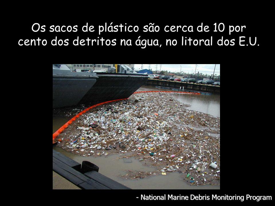 Os sacos de plástico são cerca de 10 por cento dos detritos na água, no litoral dos E.U.
