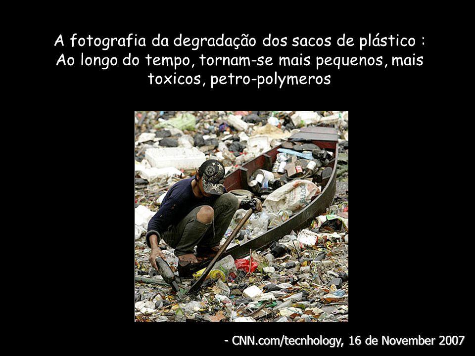 A fotografia da degradação dos sacos de plástico : Ao longo do tempo, tornam-se mais pequenos, mais toxicos, petro-polymeros - CNN.com/tecnhology, 16 de November 2007