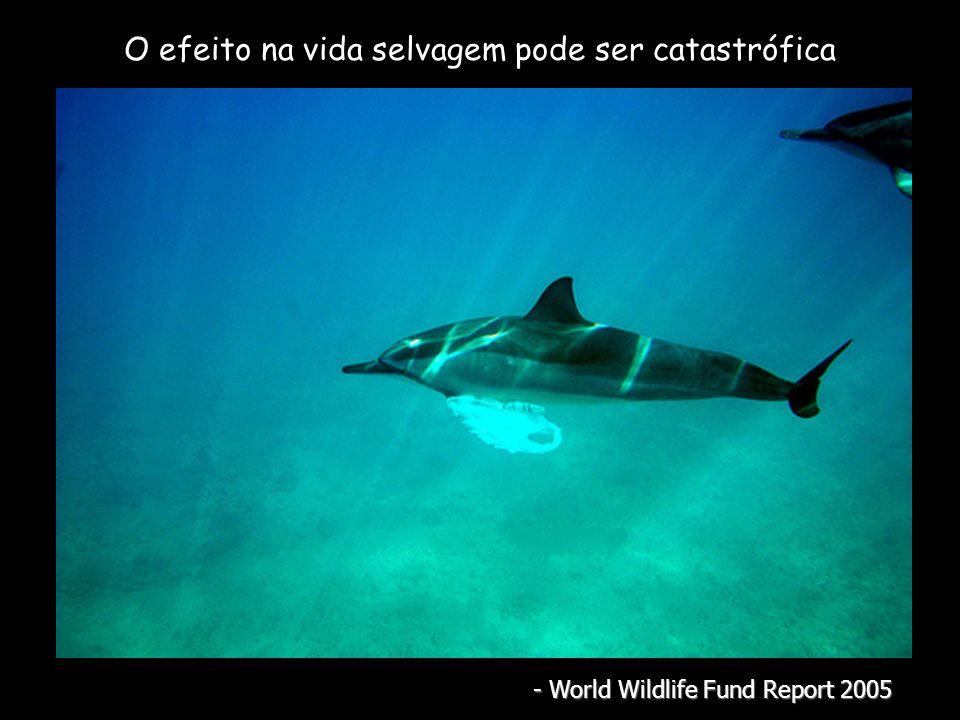 O efeito na vida selvagem pode ser catastrófica - World Wildlife Fund Report 2005