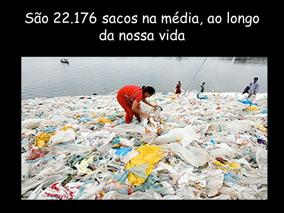 São 22.176 sacos na média, ao longo da nossa vida