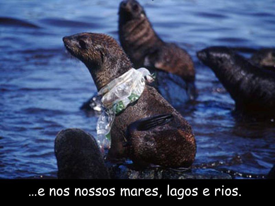 Os sacos encontram maneira de chegar ao mar através dos drenos de água e dos canos de esgoto.