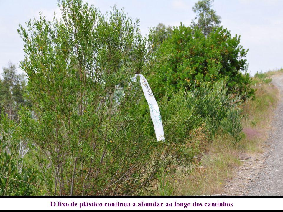 O lixo de plástico continua a abundar ao longo dos caminhos