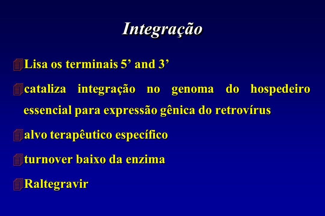 Integração 4Lisa os terminais 5 and 3 4cataliza integração no genoma do hospedeiro essencial para expressão gênica do retrovírus 4alvo terapêutico esp