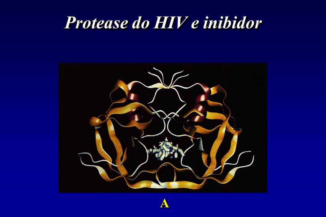 Protease do HIV e inibidor AA