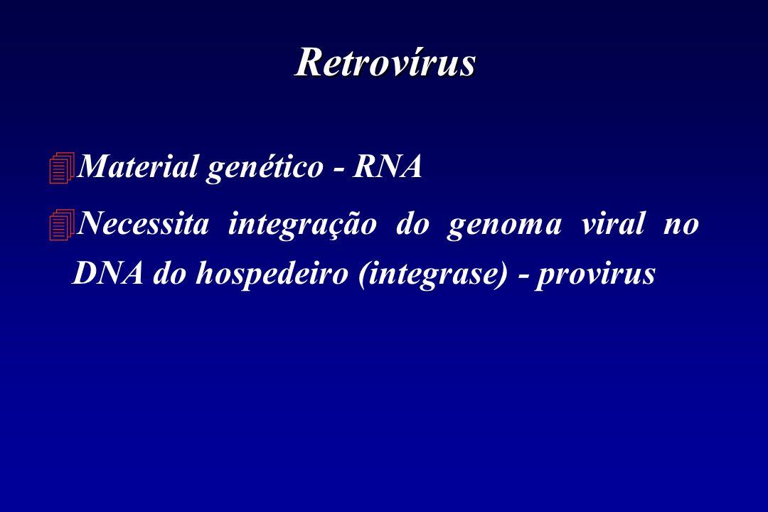 Retrovírus 4Material genético - RNA 4Necessita integração do genoma viral no DNA do hospedeiro (integrase) - provirus